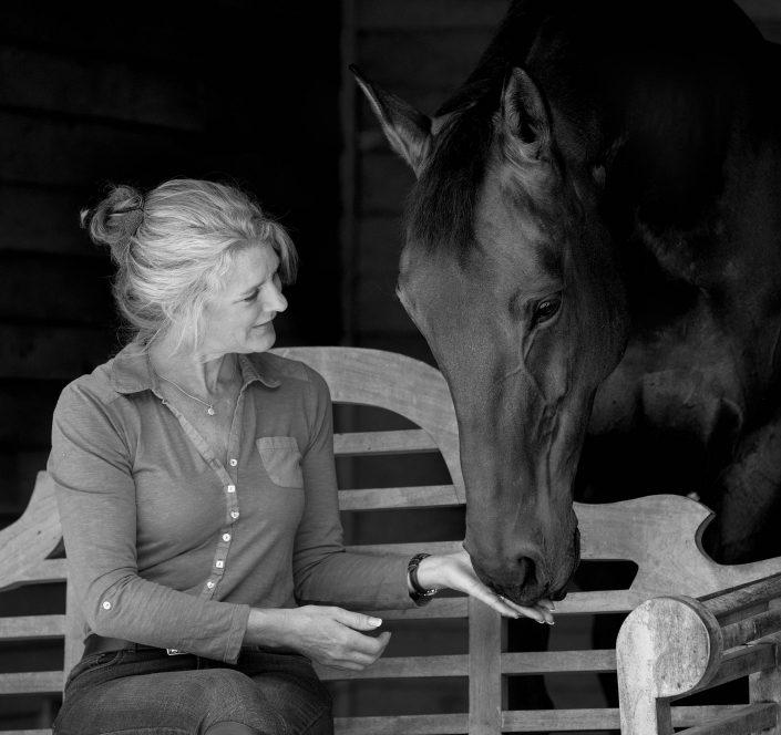 Equine_Photography_Horse_Pony_Newbury_Berkshire_Hampshire