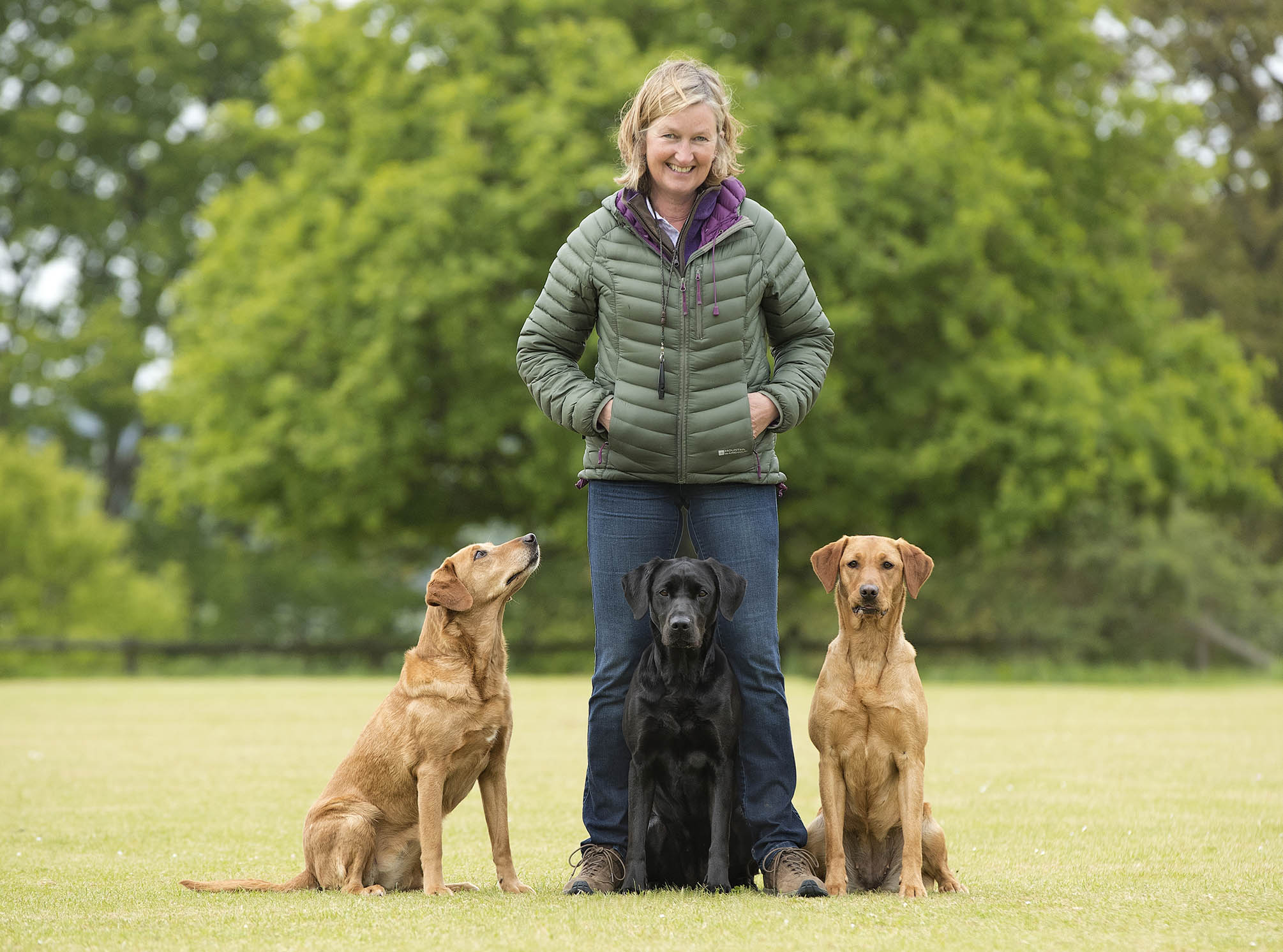 Dog_Portrait_Pet_Gundog_Photography_Newbury_Berkshire